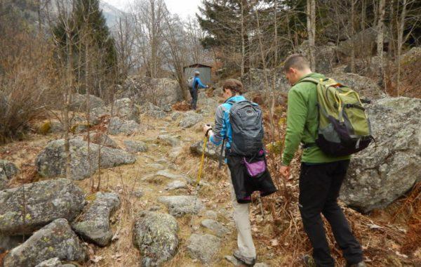 Escursioni con accompagnatore di media montagna